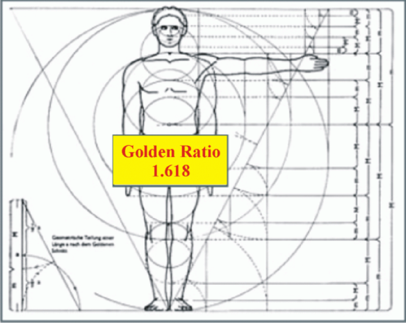 golden_ratio_human