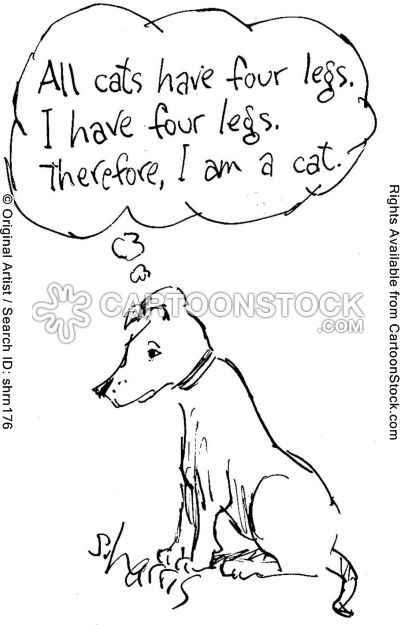 animals-logic-think-thinker-thinking-cats-shrn176l.jpg