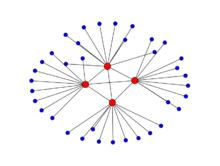 Disassortative_network_demonstrating_the_Rich_Club_effect