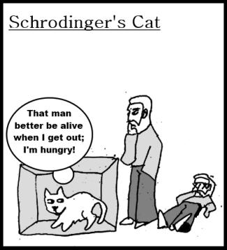 cat_schrodinger